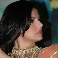 Zareen Khan - Naan Rajavaga Pogiren Movie  Audio Launch Stills