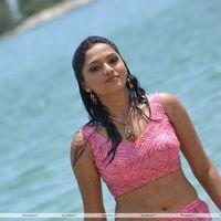Sunaina - Pandi Oli Perukki Nilayam Movie Stills | Picture 233876