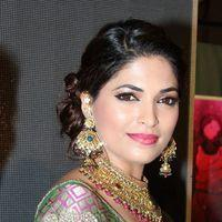 Parvathy Omanakuttan - Palam Fashion Show Concept Sarees With Parvathy Omanakuttan Stills