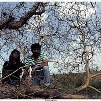Kavaathu Movie Stills   Picture 505722