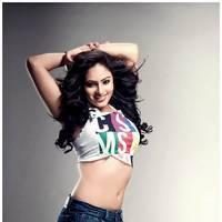 Nikesha Patel Latest Hot Stills | Picture 505866