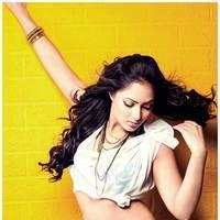 Nikesha Patel Latest Hot Stills | Picture 505870