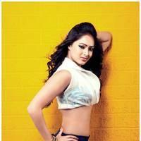 Nikesha Patel Latest Hot Stills | Picture 505871
