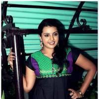 Divya Nageswari - Bhuvanakkadu Audio Launch Stills | Picture 511519