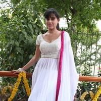 Disha Pandey - Manathil Mayam Seithai Movie Launch Stills | Picture 450787