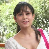 Disha Pandey - Manathil Mayam Seithai Movie Launch Stills | Picture 450801
