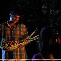 Virudhalaam Pattu Movie  Hot Stills | Picture 451408