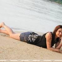 Naalu Perum Romba Nallavanga Movie Photos | Picture 455087