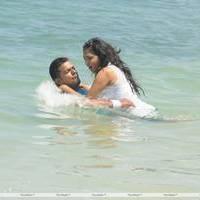 Naalu Perum Romba Nallavanga Movie Photos | Picture 455090