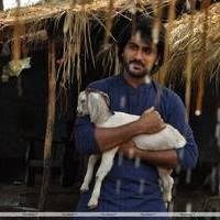 Sharvanand - Naanthan Da Movie Stills | Picture 457052