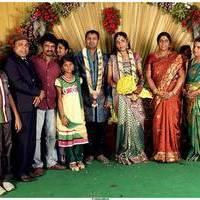 Thambi Ramaiah Daughter Wedding Reception Stills