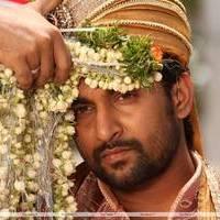 Nani - Paisa Telugu Movie Stills   Picture 454646