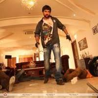 Nani - Paisa Telugu Movie Stills   Picture 454648