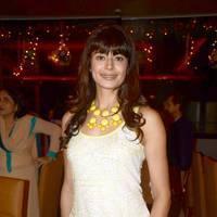 Pooja Batra - Pooja Batra launches Yoko Sizzlers restaurant photos   Picture 504098