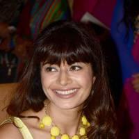 Pooja Batra - Pooja Batra launches Yoko Sizzlers restaurant photos   Picture 504110