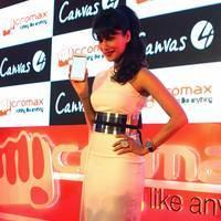 Chitrangada Singh unveiled Micromax Canvas 4 Smartphone Photos   Picture 505000