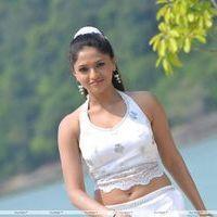 Sunaina - Pandi Oli Perukki Nilayam Movie Hot Stills