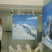 Road to Mont Blanc, An Ode to France Painting Exhibition Photos