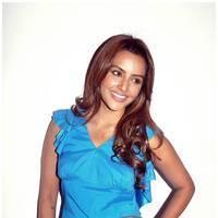 Priya Anand - Ethir Neechal Movie Success Meet Photos