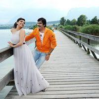 Sarachoru Movie New Stills