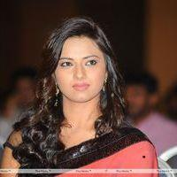 Isha Chawla at Poola Rangadu Audio Launch - Pictures