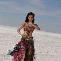 Shruti Haasan Hot Stills | Picture 157566