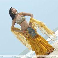 Shruti Haasan Hot Stills | Picture 157567