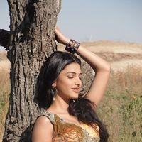 Shruti Haasan Hot Stills | Picture 157572