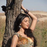 Shruti Haasan Hot Stills | Picture 157577