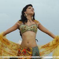 Shruti Haasan Hot Stills | Picture 157582