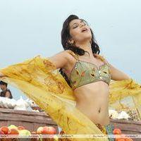 Shruti Haasan Hot Stills | Picture 157587