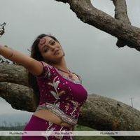 Bhavana Stills from Prema Nilayam Movie