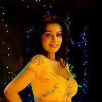 Asha Saini Hot Stills from Song