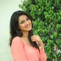Jasmine at Dilnnodu Press Meet Pictures