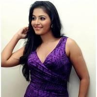 Anjali Hot at Balupu Success Meet Photos   Picture 501509