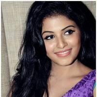 Anjali Hot at Balupu Success Meet Photos   Picture 501512
