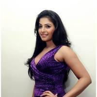 Anjali Hot at Balupu Success Meet Photos   Picture 501513