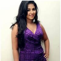 Anjali Hot at Balupu Success Meet Photos   Picture 501514