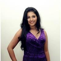 Anjali Hot at Balupu Success Meet Photos   Picture 501515