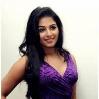 Anjali Hot at Balupu Success Meet Photos   Picture 501517