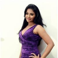 Anjali Hot at Balupu Success Meet Photos   Picture 501518