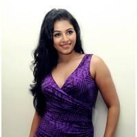 Anjali Hot at Balupu Success Meet Photos   Picture 501521