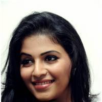 Anjali Hot at Balupu Success Meet Photos   Picture 501523