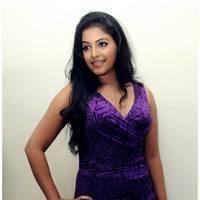 Anjali Hot at Balupu Success Meet Photos   Picture 501524