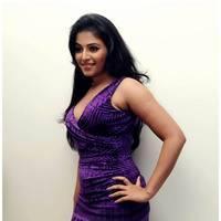 Anjali Hot at Balupu Success Meet Photos   Picture 501526