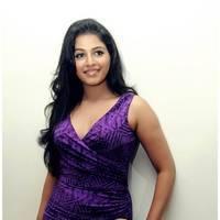 Anjali Hot at Balupu Success Meet Photos   Picture 501528