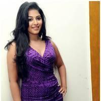 Anjali Hot at Balupu Success Meet Photos   Picture 501529