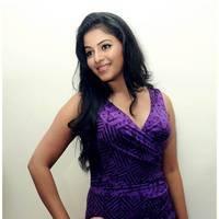 Anjali Hot at Balupu Success Meet Photos   Picture 501530