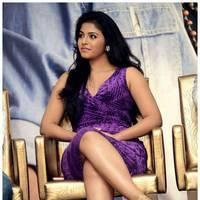 Anjali (Actress) - Balupu Movie Success Meet Photos | Picture 501601