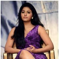 Anjali (Actress) - Balupu Movie Success Meet Photos | Picture 501620